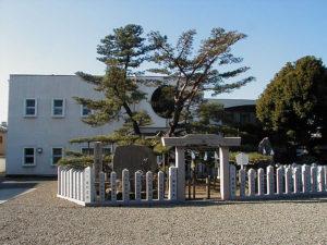 尾上神社_尾上の松